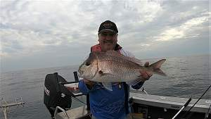 Click image for larger version.  Name:First Crowdy head snapper (2).jpg Views:0 Size:45.9 KB ID:120755