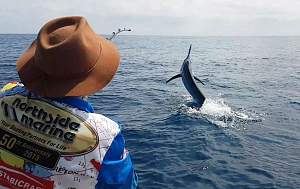 Click image for larger version.  Name:Dec%2014%20Blue%20Marlin.jpg Views:0 Size:62.8 KB ID:120519